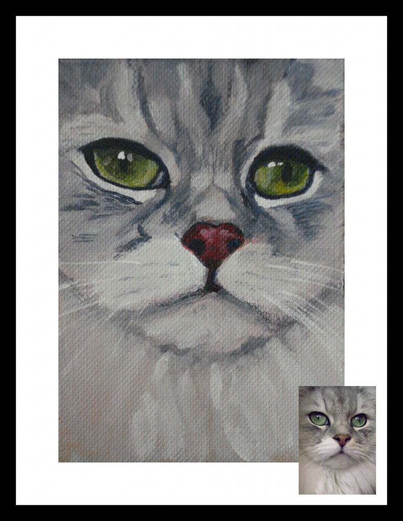Pet Portrait of a Cat