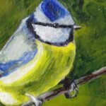 Blue tit on paper featured image