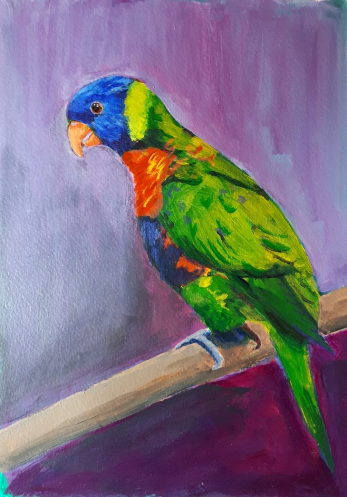 A Colourful Parrot - Parrot painted in acrylics for 'Draw a bird Day' - Final painting.