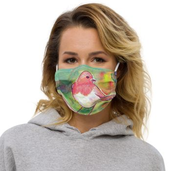 Robin Redbreast Face Mask