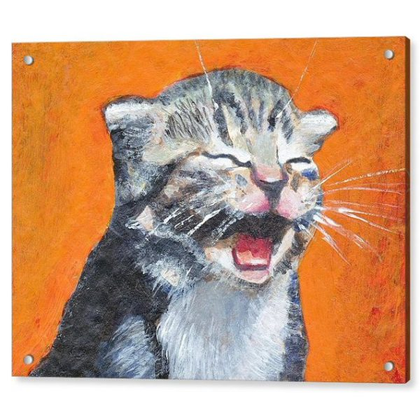 Cute Laughing Kitten 18 x 24 inches Acrylic Print Wall Art