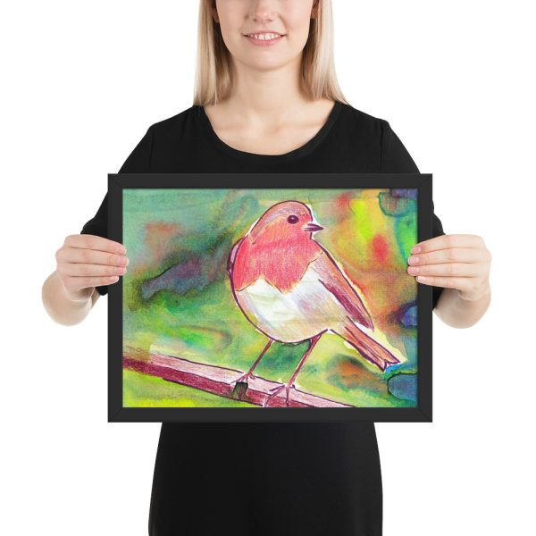 Robin Redbreast Framed Print 12x16
