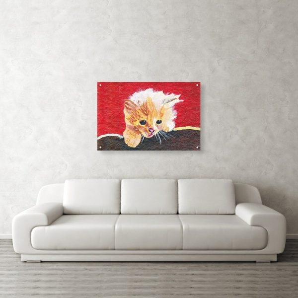 Lost Naughty Kitten 24 x 36 inches Acrylic Print Wall Art