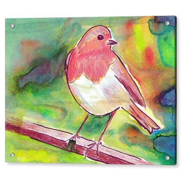 Robin Redbreast 18 x 24 inches Acrylic Print Wall Art