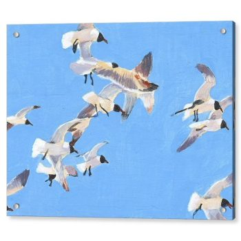 Flock of Seagulls 18 x 24 inches Acrylic Print Wall Art
