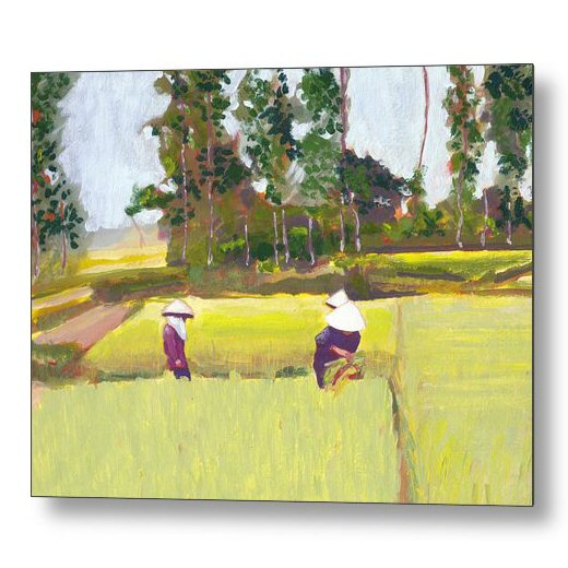Vietnamese Paddy Fields 18 x 24 inches Metal Print Wall Art