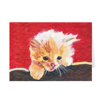 Naughty Kitten Greeting Card