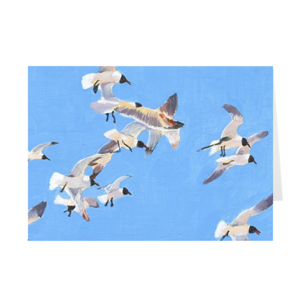 Flock Of Flying Seagulls Greeting Card
