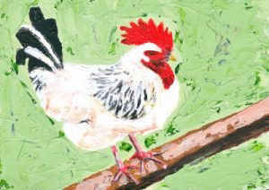 Cockerel on Green