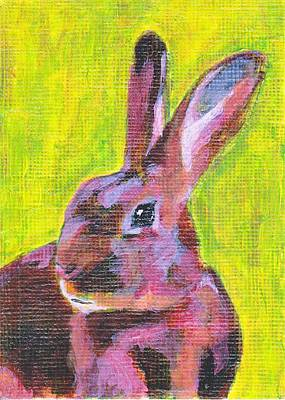 Red Belgian Hare Rabbit