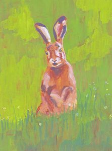 Red Rabbit In Green Grass