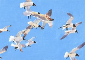 Flock of Flying Seagulls